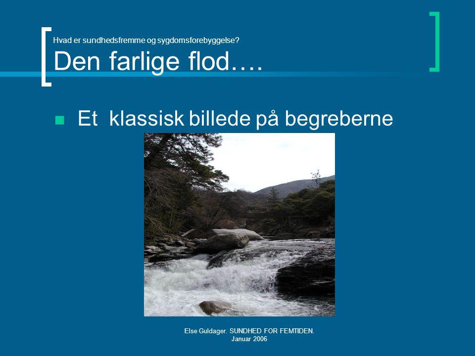 Hvad er sundhedsfremme og sygdomsforebyggelse Den farlige flod….