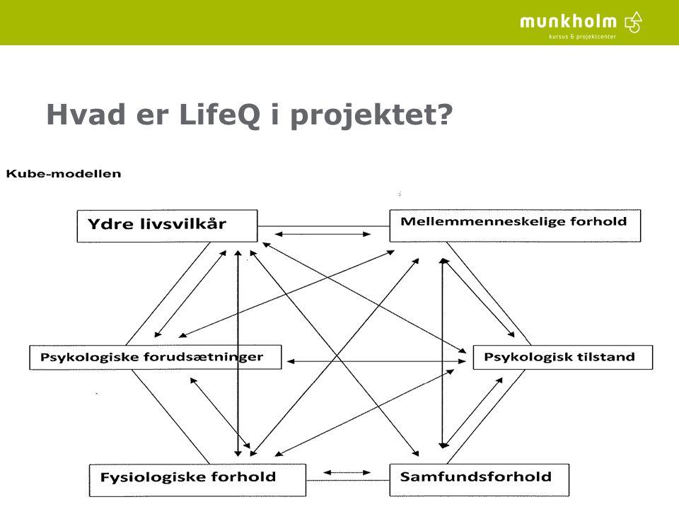 Hvad er LifeQ i projektet