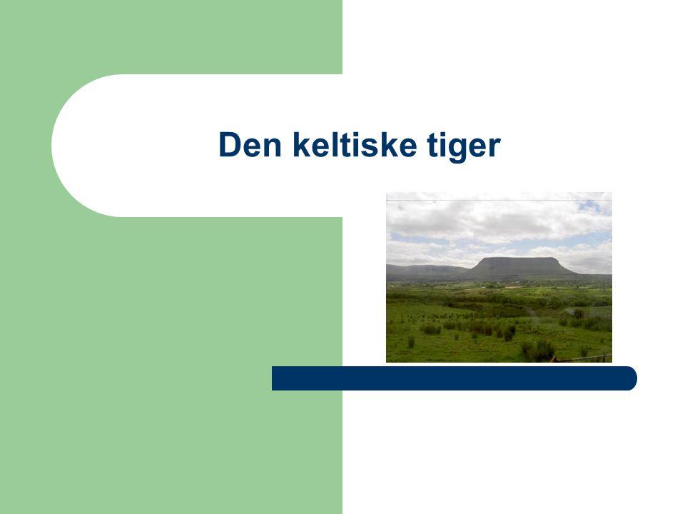 Den keltiske tiger
