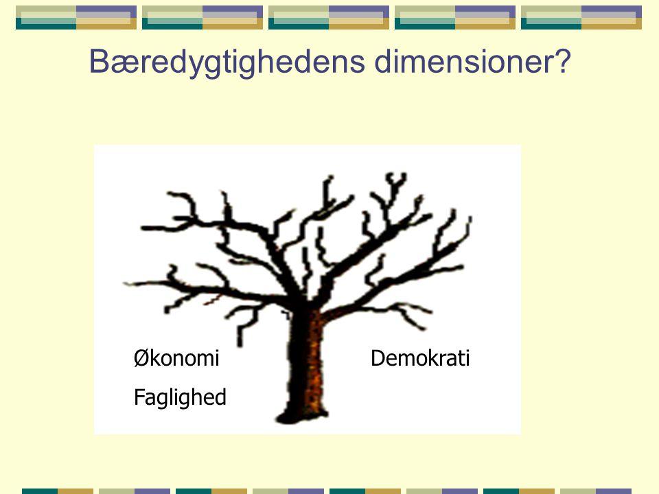 Bæredygtighedens dimensioner