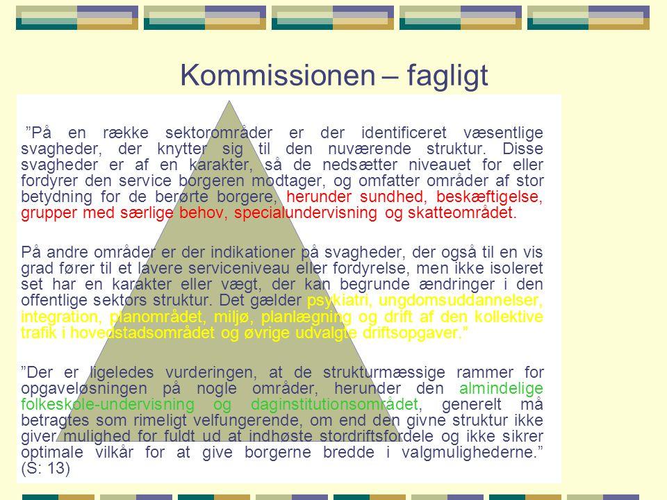 Kommissionen – fagligt