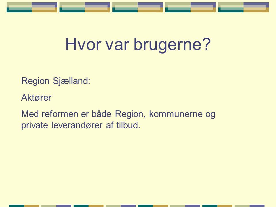 Hvor var brugerne Region Sjælland: Aktører