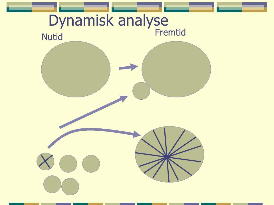 Dynamisk analyse Fremtid Nutid