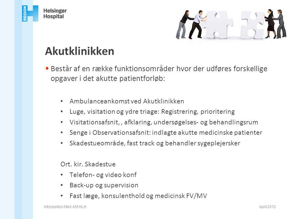 Akutklinikken Består af en række funktionsområder hvor der udføres forskellige opgaver i det akutte patientforløb: