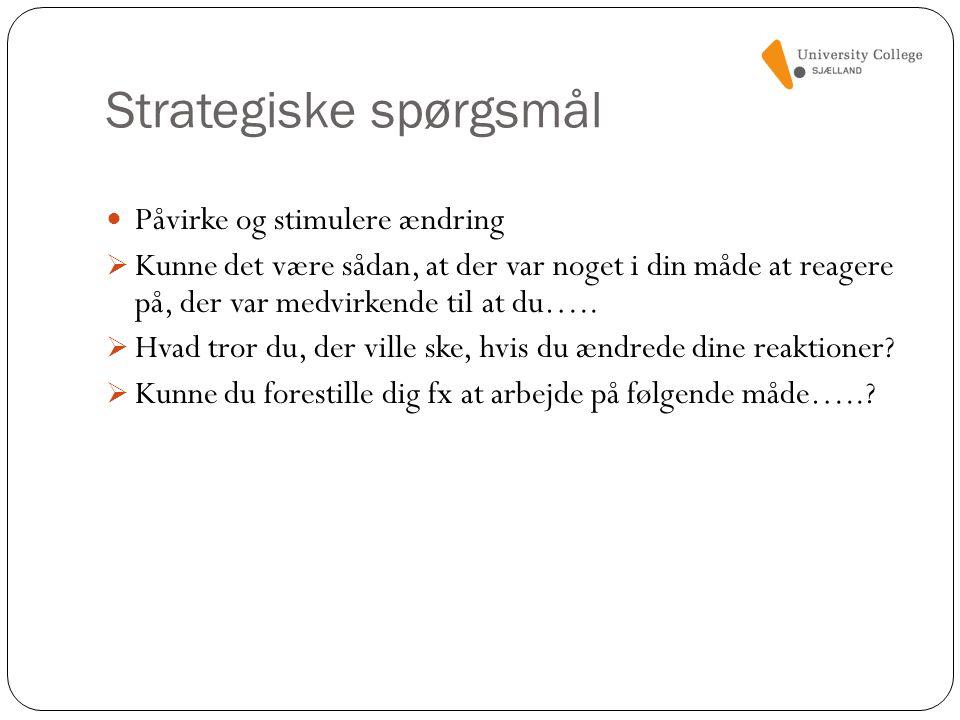 Strategiske spørgsmål