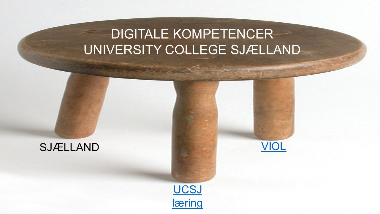 UNIVERSITY COLLEGE SJÆLLAND