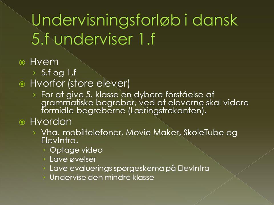 Undervisningsforløb i dansk 5.f underviser 1.f