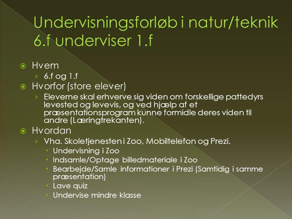 Undervisningsforløb i natur/teknik 6.f underviser 1.f