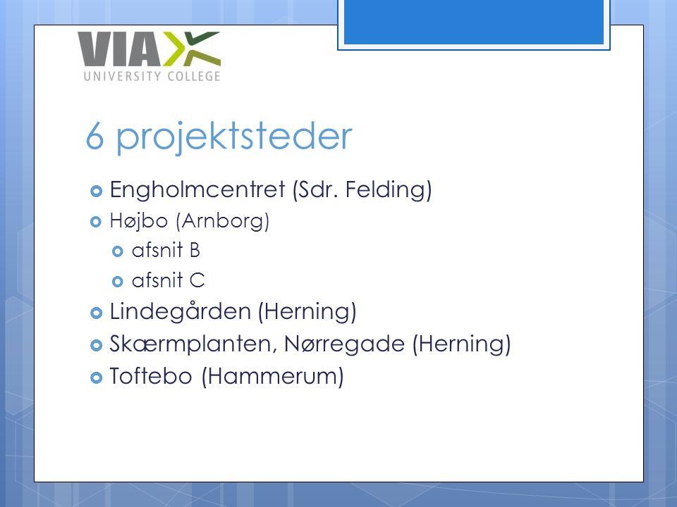 6 projektsteder Engholmcentret (Sdr. Felding) Lindegården (Herning)
