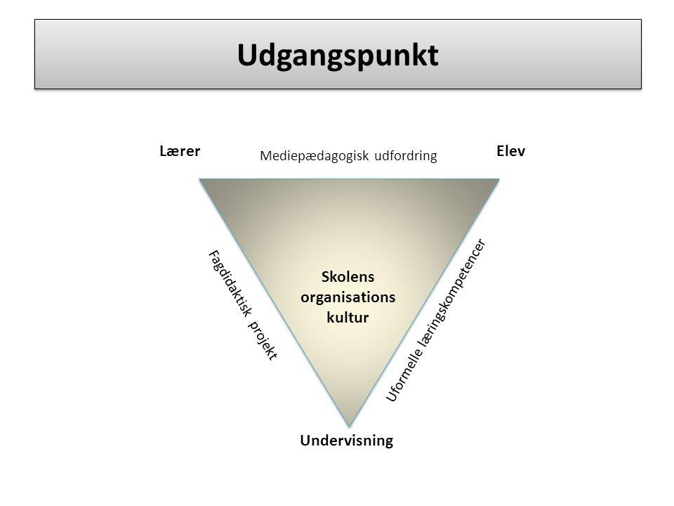 Skolens organisations