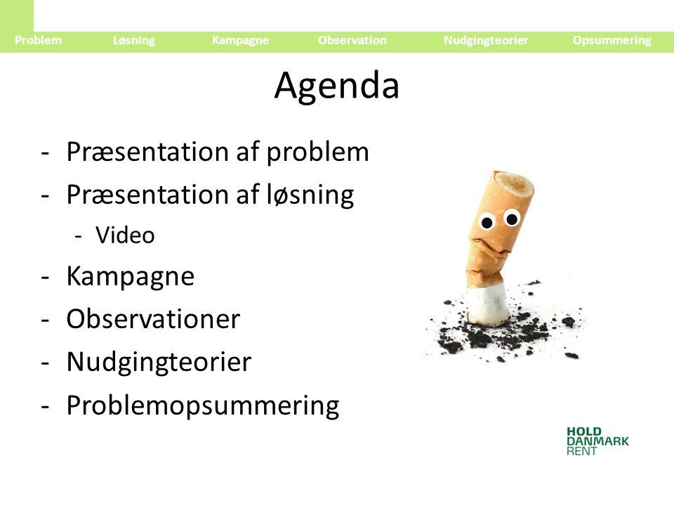 Agenda Præsentation af problem Præsentation af løsning Kampagne