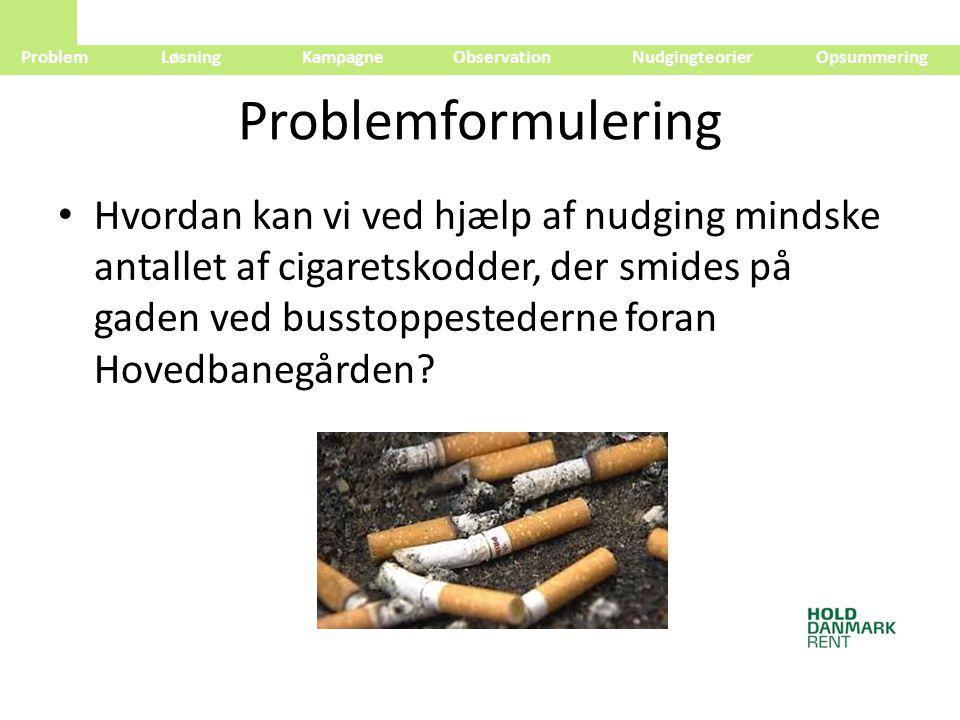 Problem Løsning Kampagne Observation Nudgingteorier Opsummering