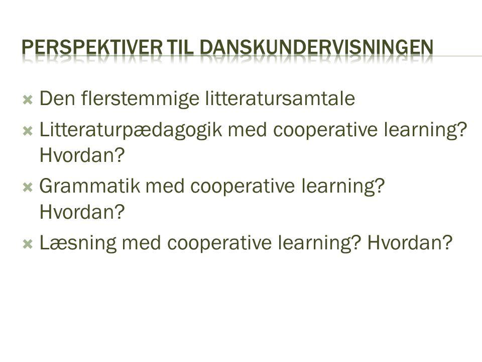 Perspektiver til danskundervisningen