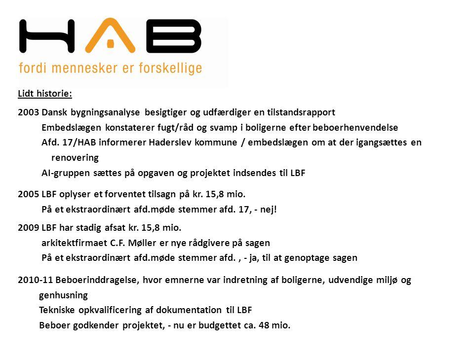 Lidt historie: 2003 Dansk bygningsanalyse besigtiger og udfærdiger en tilstandsrapport.