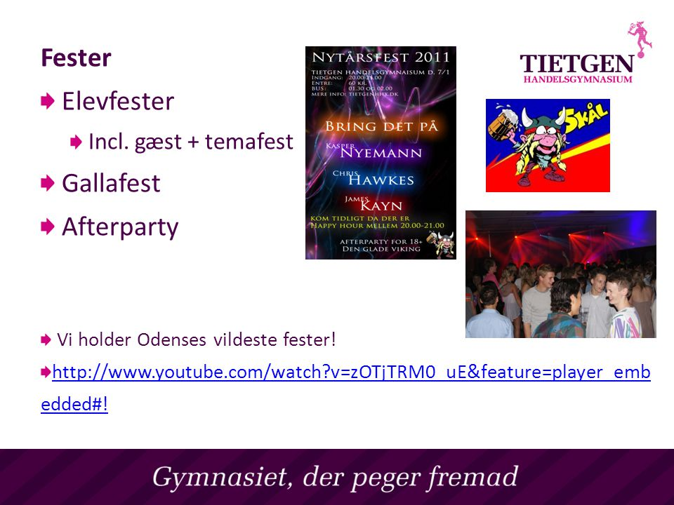 Fester Elevfester Gallafest Afterparty Incl. gæst + temafest