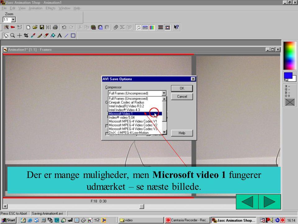 Der er mange muligheder, men Microsoft video 1 fungerer udmærket – se næste billede.