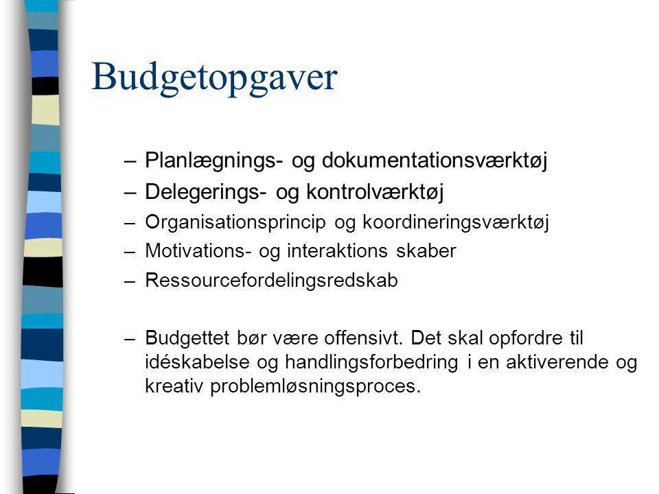 Budgetopgaver Planlægnings- og dokumentationsværktøj