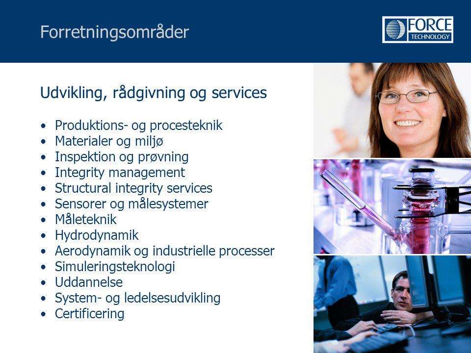 Forretningsområder Udvikling, rådgivning og services