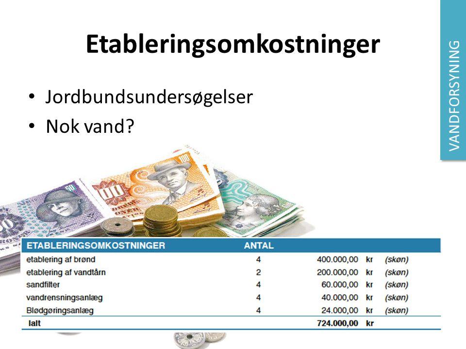 Etableringsomkostninger