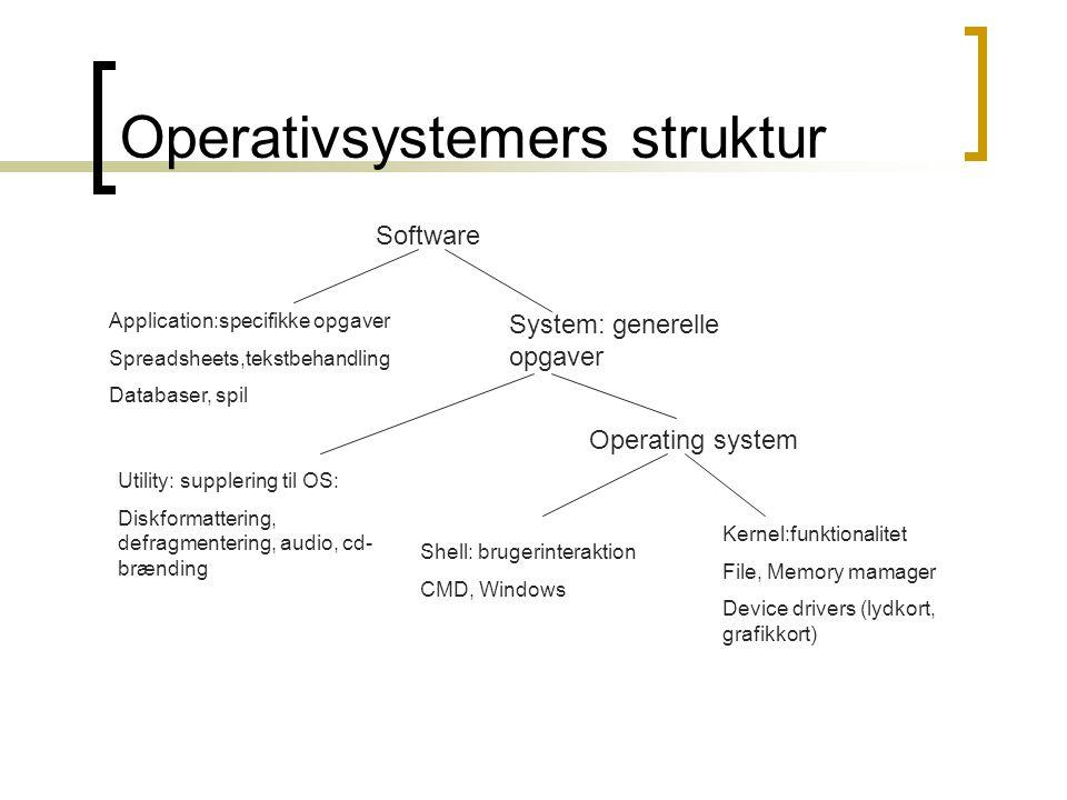 Operativsystemers struktur