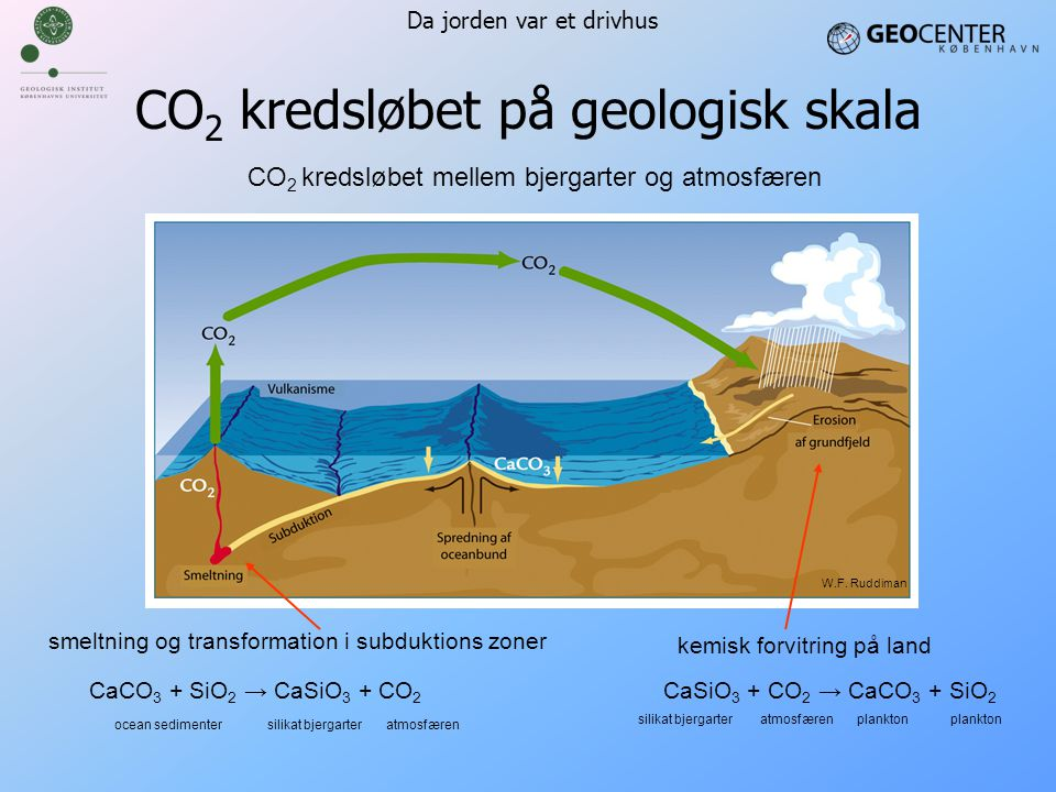 CO2 kredsløbet på geologisk skala