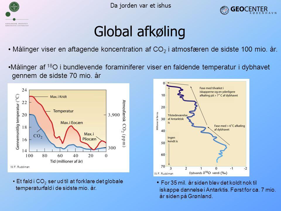 Da jorden var et ishus Global afkøling. Målinger viser en aftagende koncentration af CO2 i atmosfæren de sidste 100 mio. år.