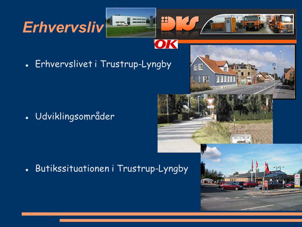 Erhvervsliv Erhvervslivet i Trustrup-Lyngby Udviklingsområder