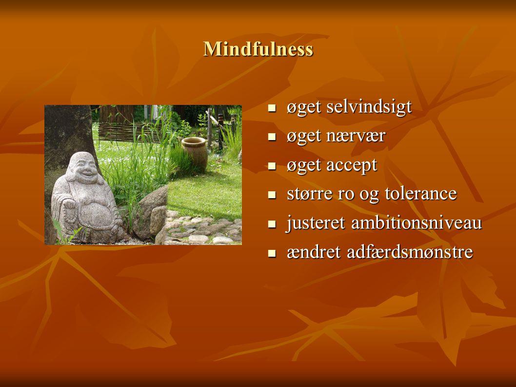 Mindfulness øget selvindsigt øget nærvær øget accept