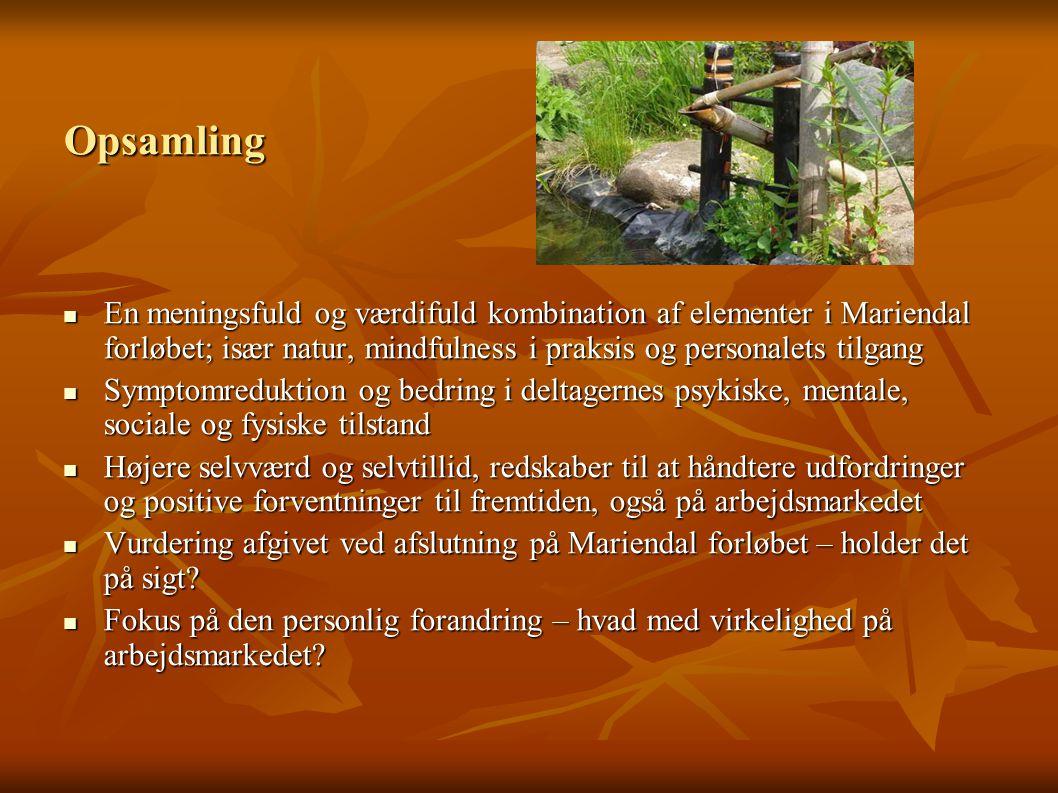 Opsamling En meningsfuld og værdifuld kombination af elementer i Mariendal forløbet; især natur, mindfulness i praksis og personalets tilgang.