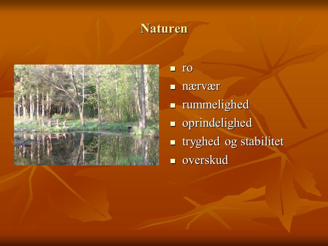Naturen ro nærvær rummelighed oprindelighed tryghed og stabilitet