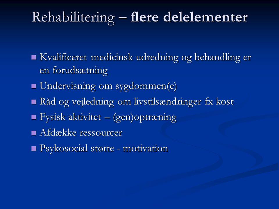 Rehabilitering – flere delelementer
