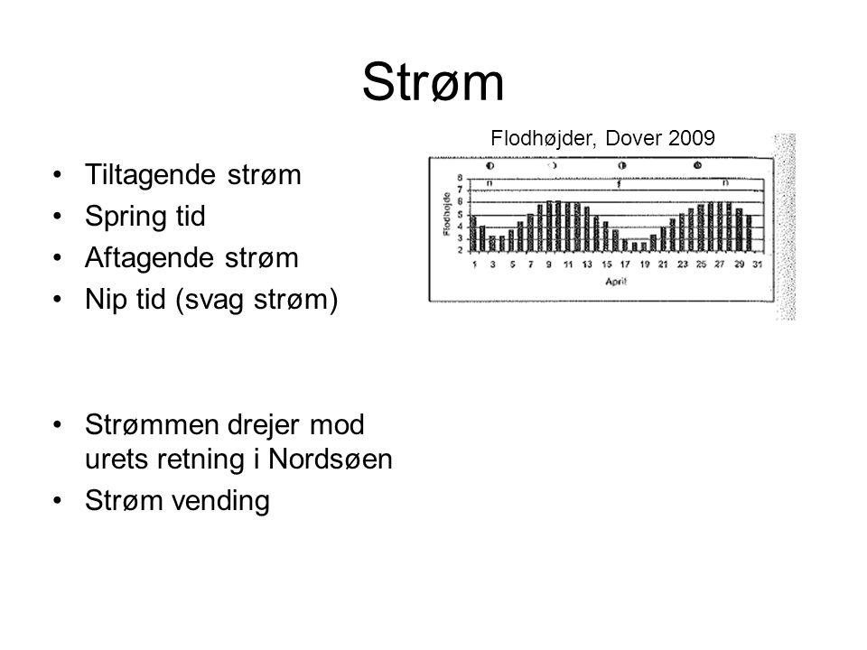 Strøm Tiltagende strøm Spring tid Aftagende strøm Nip tid (svag strøm)