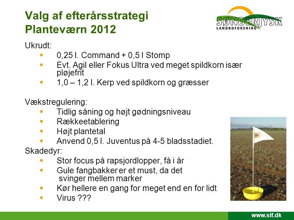 Valg af efterårsstrategi Planteværn 2012