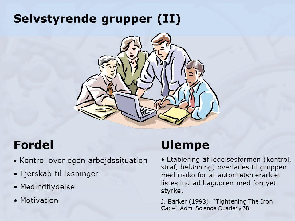 Selvstyrende grupper (II)
