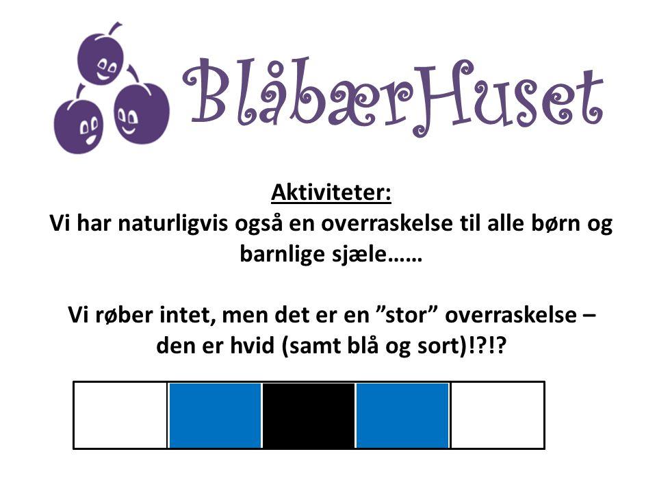 BlåbærHuset Aktiviteter: