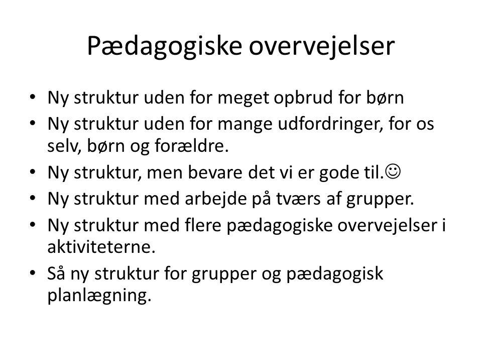 Pædagogiske overvejelser