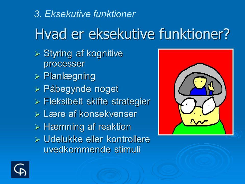 Hvad er eksekutive funktioner