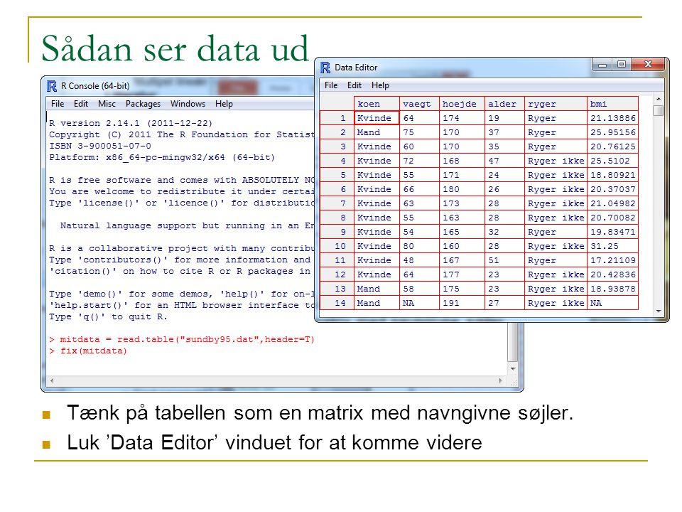 Sådan ser data ud Tænk på tabellen som en matrix med navngivne søjler.