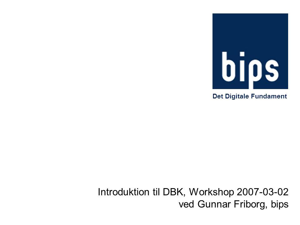 Introduktion til DBK, Workshop 2007-03-02 ved Gunnar Friborg, bips