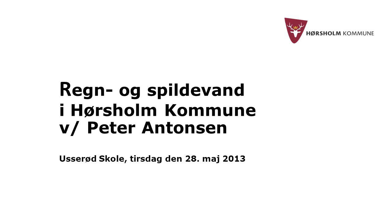 Regn- og spildevand i Hørsholm Kommune v/ Peter Antonsen Usserød Skole, tirsdag den 28. maj 2013
