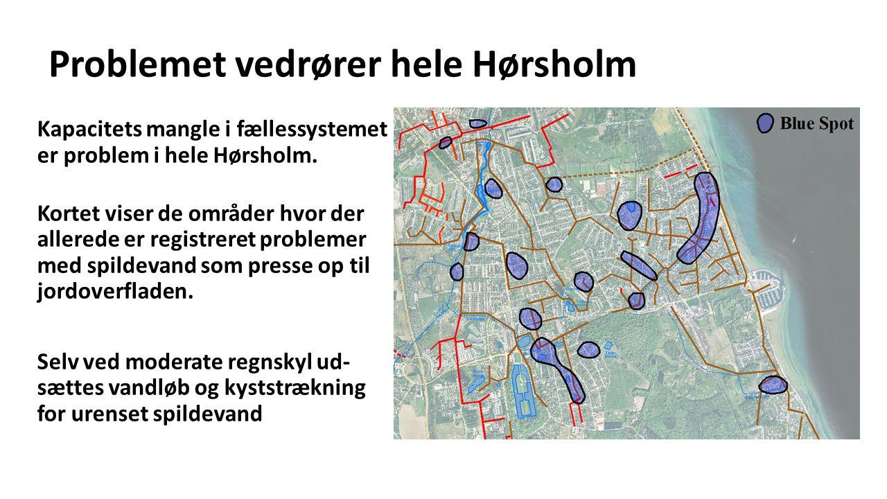 Problemet vedrører hele Hørsholm