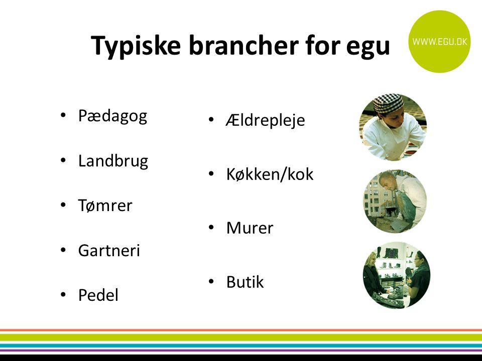 Typiske brancher for egu