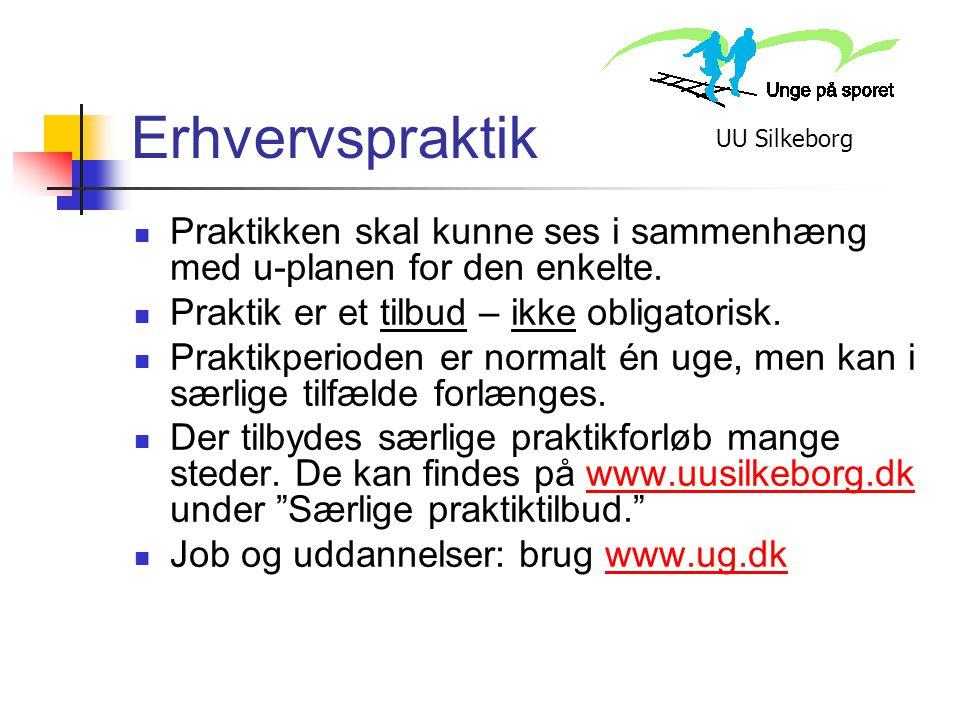 Erhvervspraktik UU Silkeborg. Praktikken skal kunne ses i sammenhæng med u-planen for den enkelte.