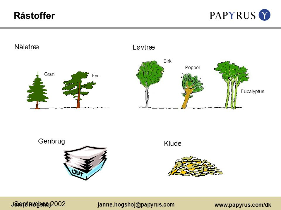 Råstoffer Nåletræ Løvtræ Genbrug Klude September 2002 Birk Poppel Gran
