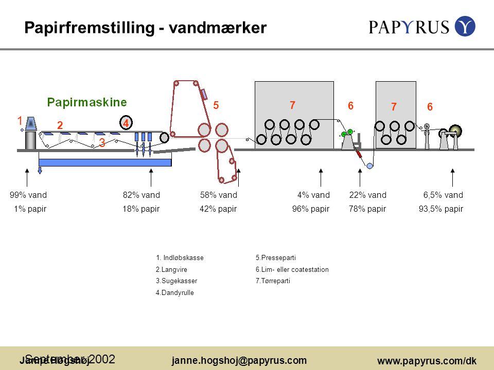 Papirfremstilling - vandmærker