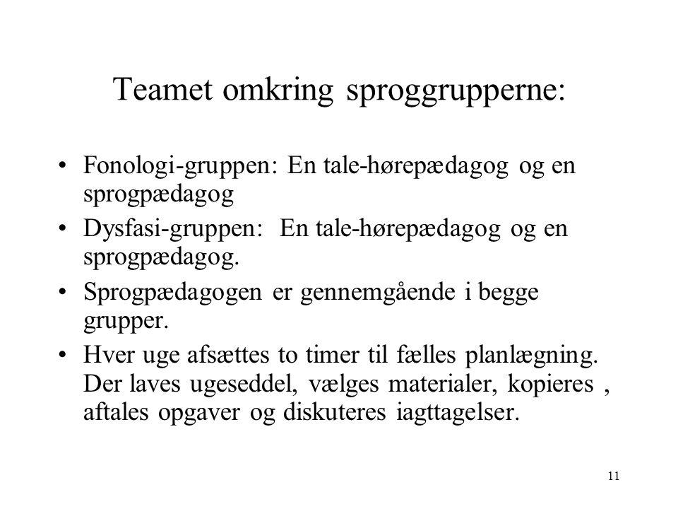 Teamet omkring sproggrupperne: