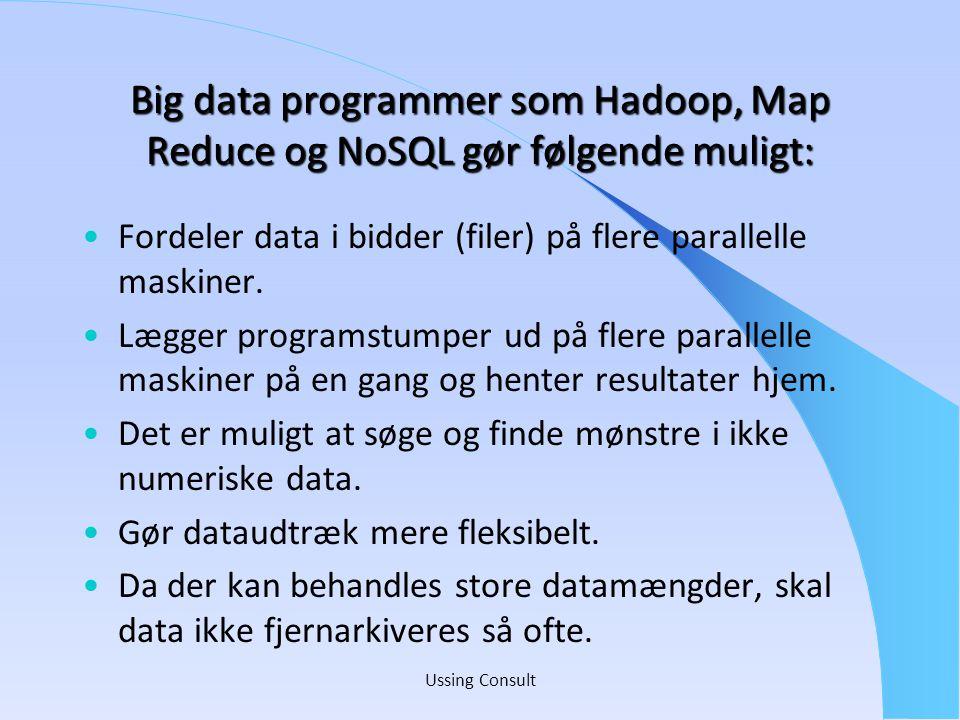Big data programmer som Hadoop, Map Reduce og NoSQL gør følgende muligt: