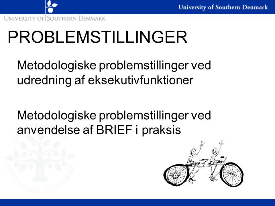 PROBLEMSTILLINGER Metodologiske problemstillinger ved udredning af eksekutivfunktioner.