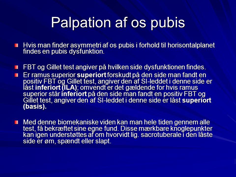 Palpation af os pubis Hvis man finder asymmetri af os pubis i forhold til horisontalplanet findes en pubis dysfunktion.