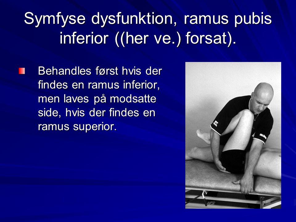 Symfyse dysfunktion, ramus pubis inferior ((her ve.) forsat).